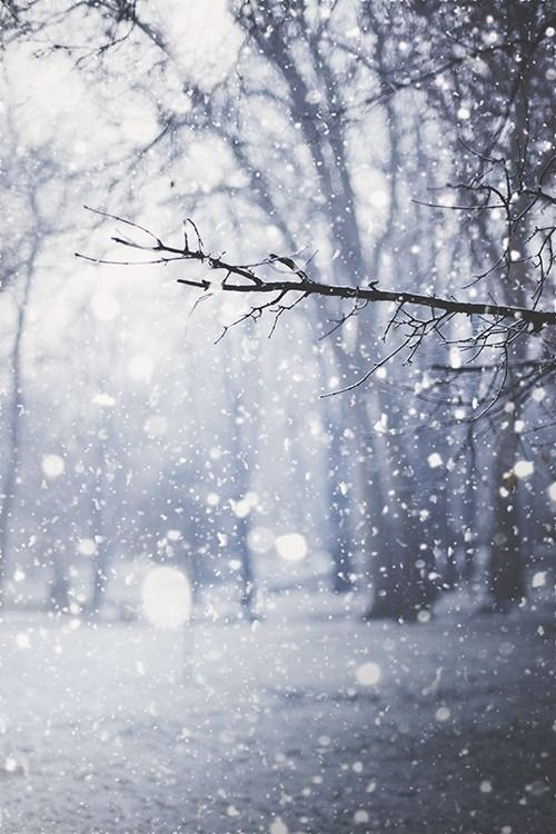 Blue Wedding romance- snowy landscape