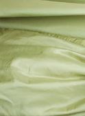 Pale green taffeta (ref T23)